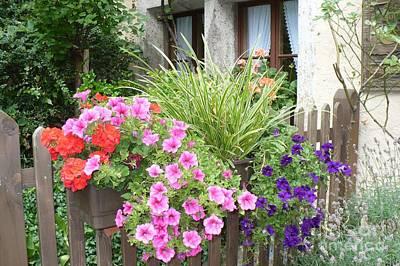 Photograph - Rothenburg Flower Box by Carol Groenen
