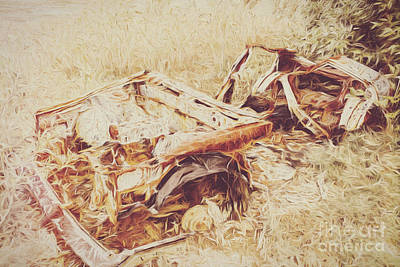 Comics Royalty-Free and Rights-Managed Images - Rotting radioactive car by Jorgo Photography - Wall Art Gallery