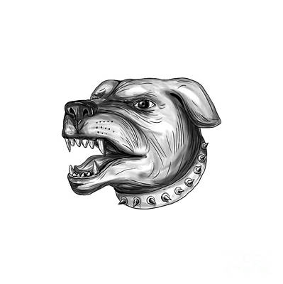 Rottweiler Dog Head Growling Tattoo Art Print by Aloysius Patrimonio