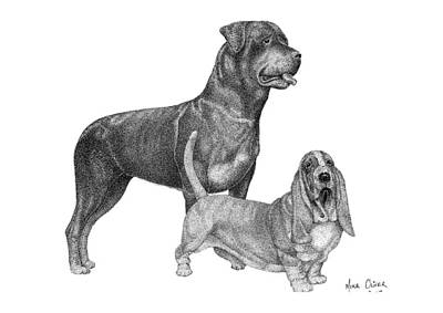 Rottweiler Drawing Pointillism Art Print by Mike Oliver