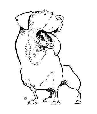 Rottweiler Wall Art - Drawing - Rottweiler Gesture Sketch by John LaFree