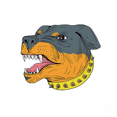 Rottweiler Guard Dog Head Aggressive Drawing Art Print by Aloysius Patrimonio