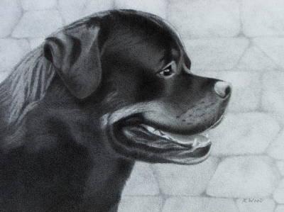 Police Dog Drawing - Rottweiler by Karen Wood