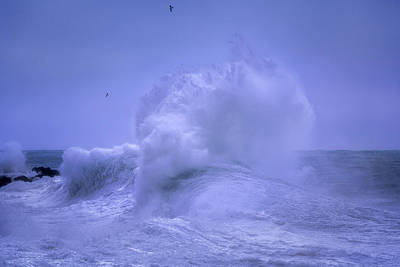 Photograph - Rough Sea 8 by Giovanni Allievi