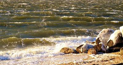 Photograph - Rough Waters by Karen Silvestri