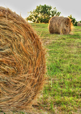 Bailing Hay Photograph - Round Bails by Sam Davis Johnson