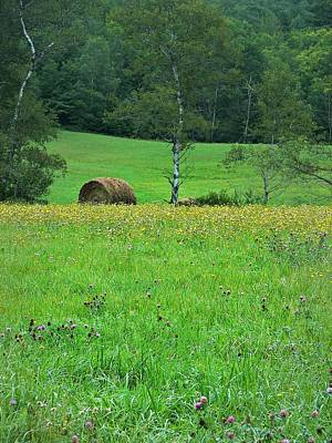 Round Bale And Wildflowers Original by Joy Nichols