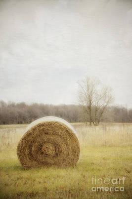 Photograph - Round Bale O'hay by Diane Enright