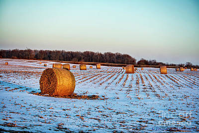 Photograph - Round Bales by David Arment