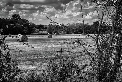 Photograph - Round Bales In Texas 003 by Lon Casler Bixby