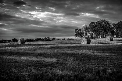 Photograph - Round Bales In Texas 004 by Lon Casler Bixby