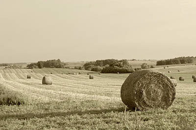Art Print featuring the photograph Round Bales by John Hix