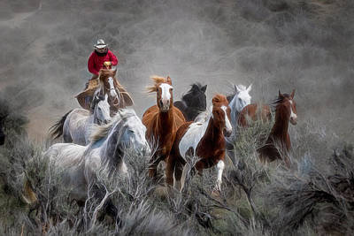 Photograph - Round Em Up by Kristal Kraft