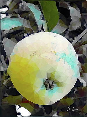 Digital Art - Round Fruit by S Art
