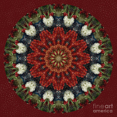 Round Fruit Kaleidoscope Original