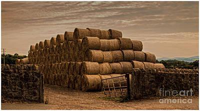 Wales Digital Art - Round Hay Bales  by Chris Evans