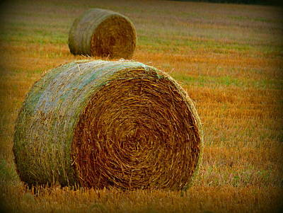 Photograph - Round Hay Bales by Kimberly Woyak
