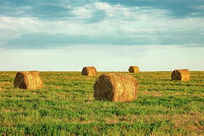 Photograph - Round Hay Bales by Todd Klassy