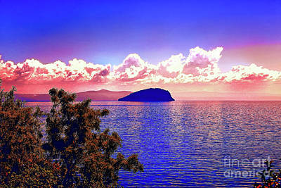 Photograph - Round Island Sunset by Rick Bragan