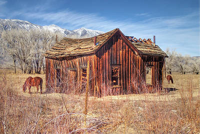 Photograph - Round Valley Shack by Newman Artography