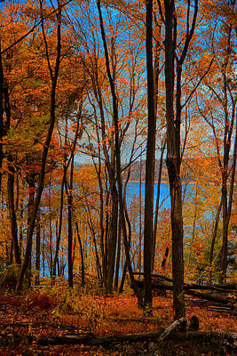 Photograph - Round Valley State Park 5 by Raymond Salani III