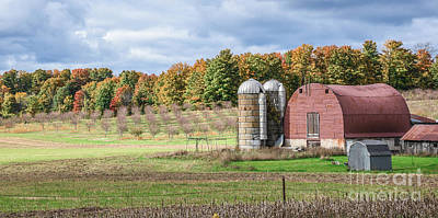 Photograph - Rounded Barn by Grace Grogan