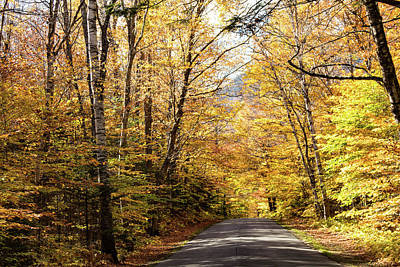 Photograph - Route 113 Maine by Jeff Folger