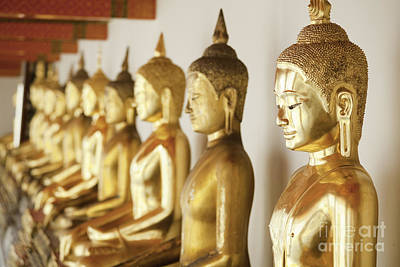 Food And Flowers Still Life - Row of Buddhas by Anthony Totah