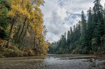 Photograph - Row Of Color On Eel River by Greg Nyquist