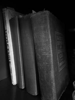 Photograph - Row Of Novels by Kyle J West