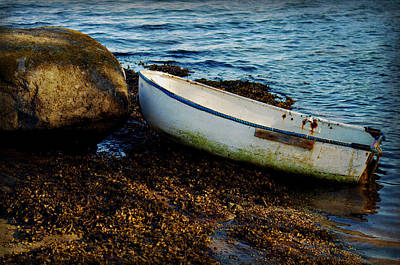 Photograph - Beached by Marilyn Wilson