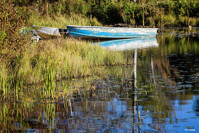 Photograph - Rowboats by Fran Gallogly