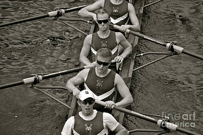 Athletes Royalty-Free and Rights-Managed Images - Rowing at the Regatta by Jason Freedman