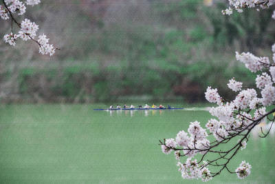 Photograph - Rowing On The Mon by Dan Friend