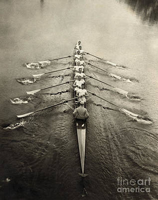Rowers Photograph - Rowing Team, C1913 by Granger