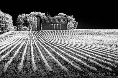 Photograph - Rows In A Farm Field With Barn And Silo In Infrared Black And White by Randall Nyhof