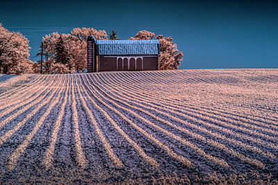 Photograph - Rows In A Farm Field With Barn And Silo In Infrared by Randall Nyhof