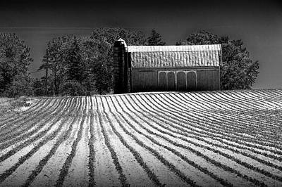 Photograph - Rows In A Farm Field With Furrows In A Row In Black And White by Randall Nyhof