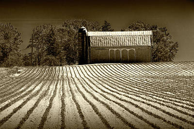Photograph - Rows In A Farm Field With Furrows In A Row In Sepia Tone by Randall Nyhof