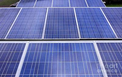 Photograph - Rows Of Solar Panels by Yali Shi