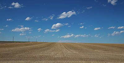 One Room Schoolhouses Photograph - Rows Of Wheat On The Eastern Plains Of Colorado by Bridget Calip