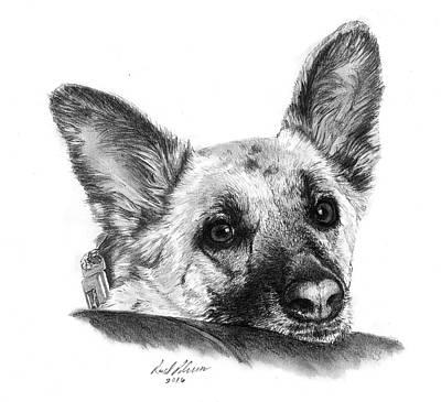 German Shepard Drawing - Roxy by Reed Palmer