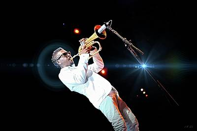 Photograph -  Roy Hargrove, Lens Flare  by Jean Francois Gil