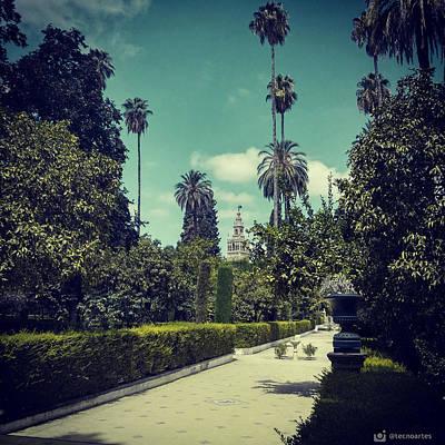 Royal Alcazar Gardens. Seville. Original