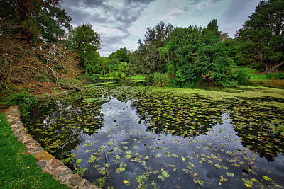 Photograph - Royal Botanical Gardens, Melbourne by Ross Henton