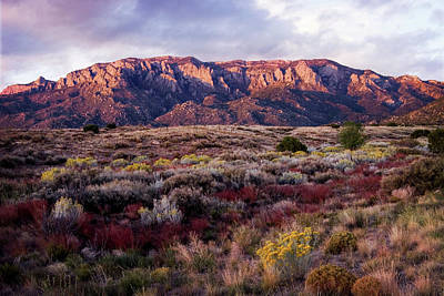 Photograph - Royal Colors Of The Sandia Mountains by Howard Holley