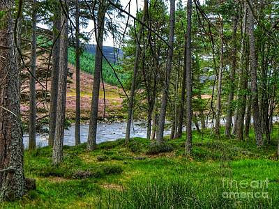 Photograph - Royal Deeside 2 by Joan-Violet Stretch