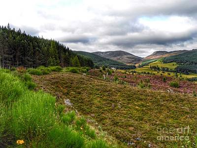 Photograph - Royal Deeside by Joan-Violet Stretch