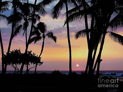 Photograph - Royal Garden Outrigger Kona Hawaii by Expressionistart studio Priscilla Batzell