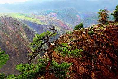 Digital Art - Royal Gorge In The Rain by Susan Vineyard
